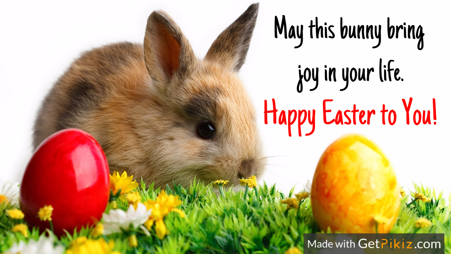 May this bunny bring  joy in your life. Happy Easter to You!